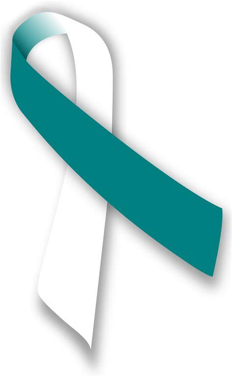 cervical cancer ribbon color ribbon design image 3739 x 6060 file type png
