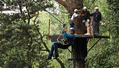Garden Tree Types - what to do on your garden route holidays canopy tours