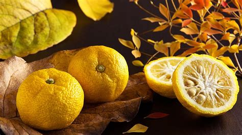 does concolor fir smell like oranges 13 ways you can enjoy yuzu japan s favourite citrus fruit original tokyo business today