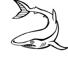 thresher shark coloring page coloring pages boys on pinterest coloring pages