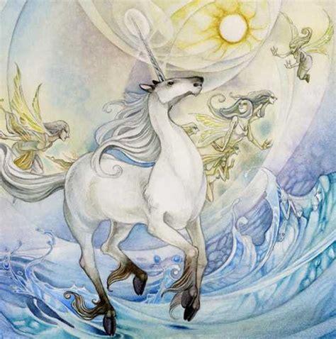 imagenes de unicornios bebes reales los unicornios de las aguas resplandecientes el