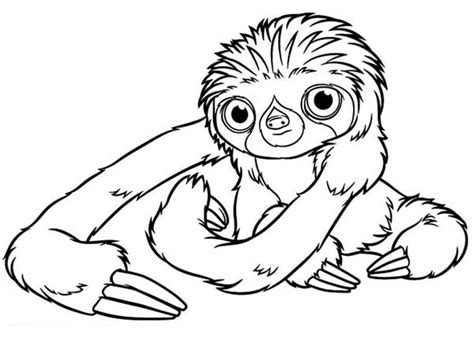 a hilarious sloth coloring book for adults and books the croods coloring pages getcoloringpages