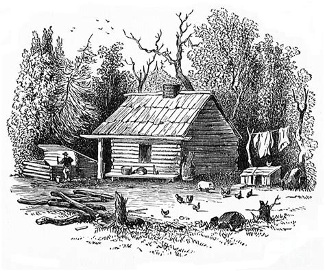 Drawings Of Log Cabins by Settler S Log Cabin 1878 Drawing By Mackay