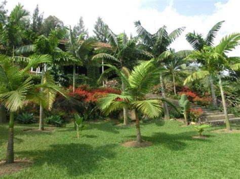 building picture of palm garden resort gisenyi