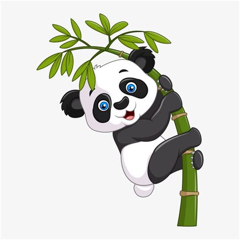 clipart panda panda panda dos desenhos animados o tesouro nacional png