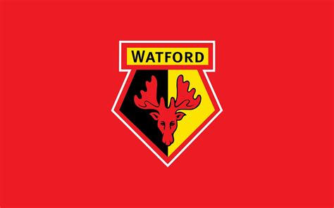 watford fc wikipedia watford