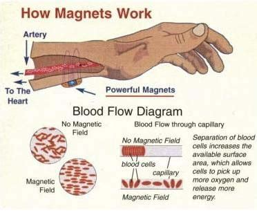your for therapy work magnet therapy alternative therapy holistic benefits magnetism