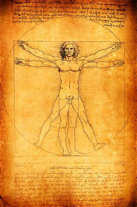 did leonardo da vinci biography did leonardo da vinci copy his famous vitruvian man page 1