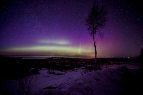 Northern Lights Michigan Forecast by Borealis Photo Of The Day