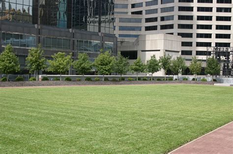 rooftop landscaping kansas city commercial landscaping professionals