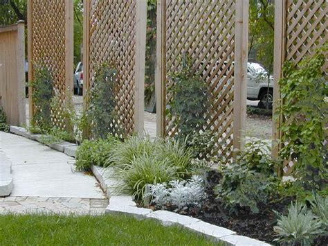 privacy trellis screen best 25 outdoor privacy panels ideas on