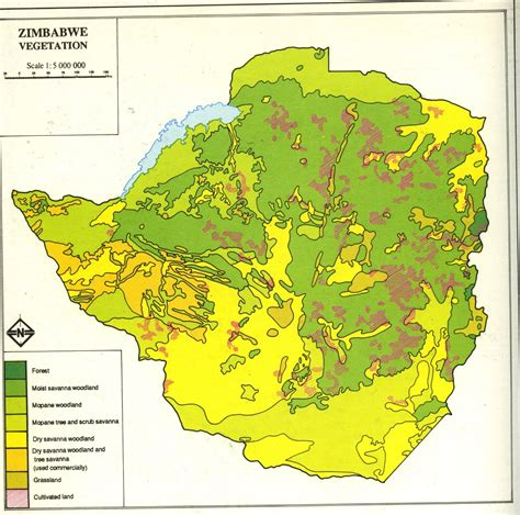 africa map vegetation module thirty activity one exploring africa