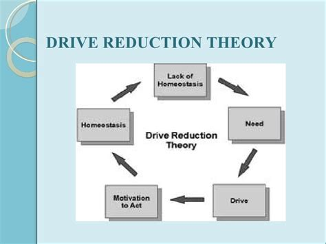 drive reduction theory exle motivation