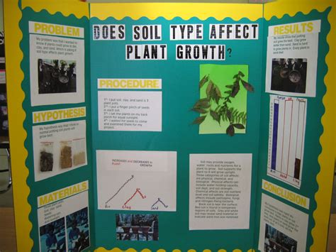 free science projects for 7th graders blogs ideas