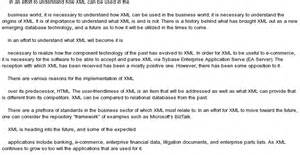 The Business World Essay by The Application Nature Purpose Of Xml In The Business World At Essaypedia