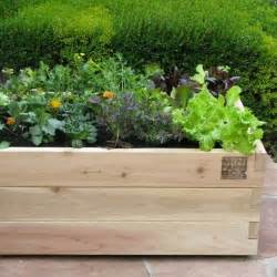 rolling farm box in designer pots eclectic outdoor