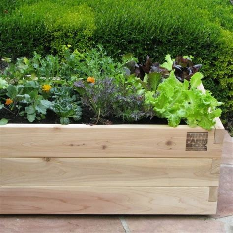 Garden Pots Planters by Rolling Farm Box In Designer Pots Eclectic Outdoor