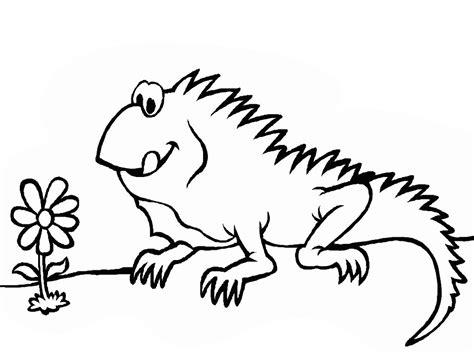 imagenes para pintar iguana free coloring pages of iguana para pintar
