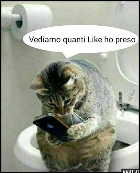 The Ho Likes by Vediamo Quanti Like Ho Preso Besti It Immagini