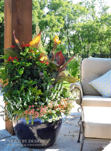 unique outdoor planters 17 best images about container gardening unique by design