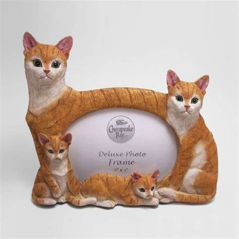 orange tabby cats photo frame holds   picture
