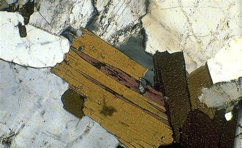 biotite thin section metamorphic rocks minerals grade and facies lucky sci