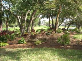 florida friendly landscaping south county assembly of neighborhoods scan florida