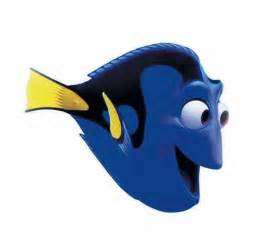 dory picture dory photo dory wallpaper