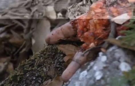 imagenes fuertes de jenny los restos del cuerpo de jenni rivera imagenes y video