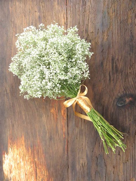 Wedding Bouquet Baby S Breath by Simple Dried Baby S Breath Bouquet Medium Wedding