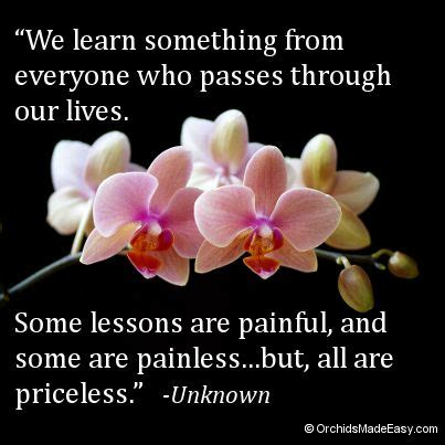 52 lessons for life a quote a week to change your life 52 best images about orchid photos quotes on pinterest