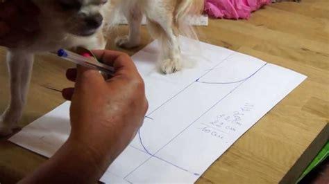 tutorial youtube gratuit chihuahua r 233 alisation d un patron part 1 tutorial youtube