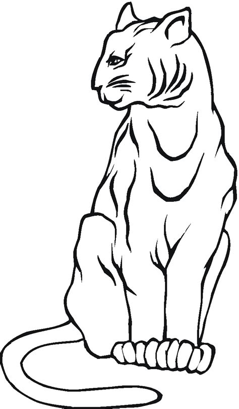 bobcat coloring page free coloring pages of bobcats