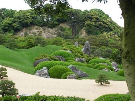 piante per giardino giapponese piante giapponesi alberi latifolie curare piante