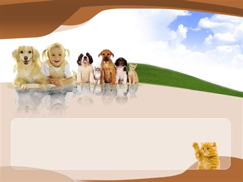 animal powerpoint template 2 แจก powerpoint template สวยๆ