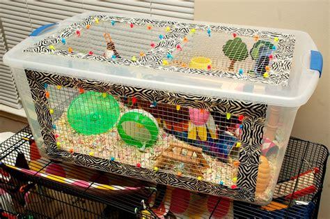 diy bin hamster cage bin cages hammy happenings