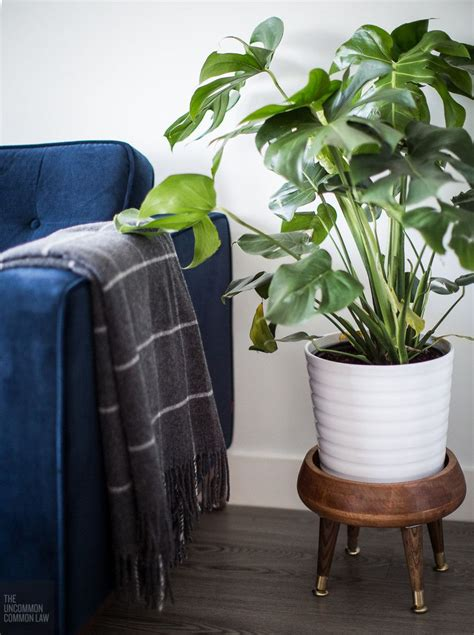 mid century modern plant stand ideas plant home furniture modern plant stand diy plant stand plants
