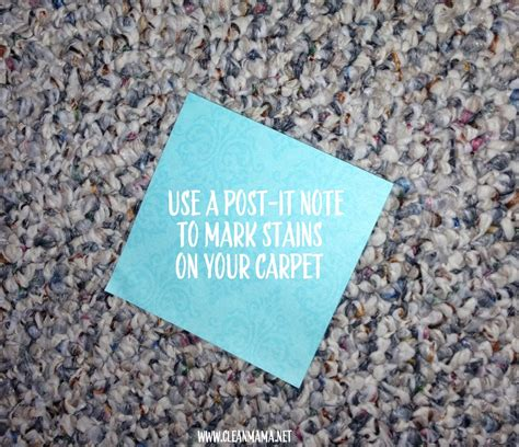 can you take a rug to the cleaners cleaning carpet cleaning 2 ways to diy clean