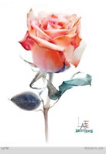 best 25 watercolor rose ideas only on pinterest