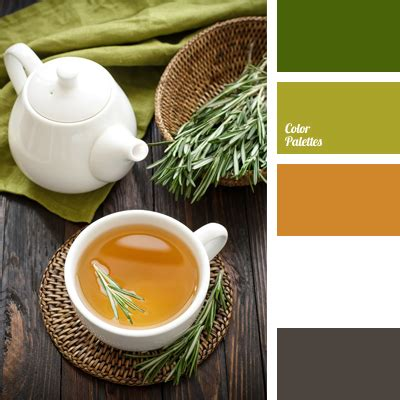 tea color color of green tea page 2 of 3 color palette ideas