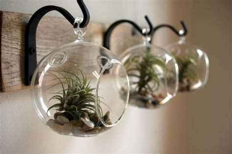 glass globe wall decor mounted to wood board with wrought