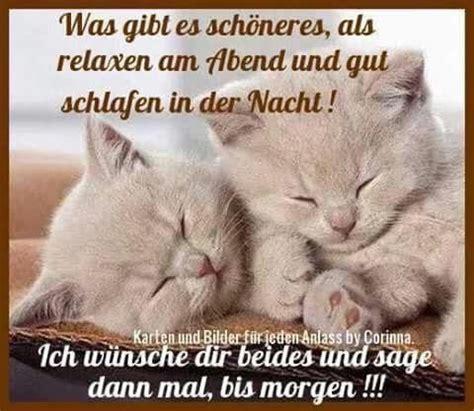 Gute Nacht Katzen Bilder by Pin Schulze Auf Hund Und Katze Gute