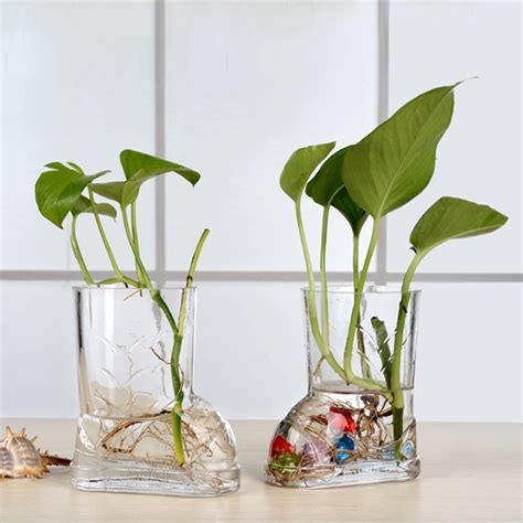 Dining Table Plants Transparent Glass Trumpet Vase Hydroponic Green Radish Plants Flower Hotel Coffee Table Dining