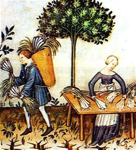 l alimentazione medievale medioevo e medicina la medicina nell alto medioevo pag