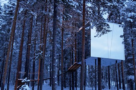 archi choong treehotel sweden tree hotel swedish architecture e 28 images tree hotel