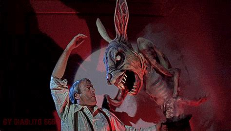film giant rabbit bunny gifs wifflegif