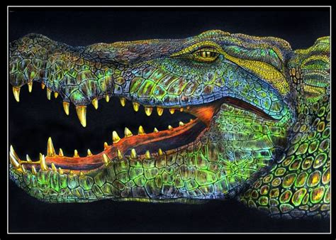 what color are alligators alligator by trevor grant kleurplaten