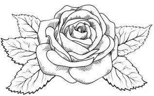 Beautiful Black And White Rose Sketches Sketch Coloring Page sketch template