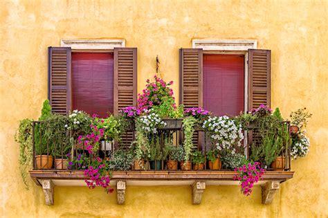 fiori da vaso balcone i fiori da balcone perenni donna moderna