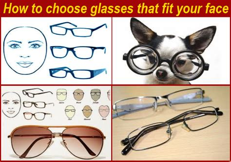 how to choose glasses the 1 of th best of how to choose glasses that fit your face
